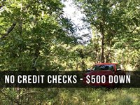 9.5 Acres Near National Forest : Birch Tree : Shannon County : Missouri