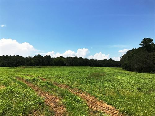 Hannatown Tract : Bainbridge : Decatur County : Georgia