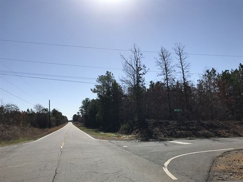 5.07 +/- Wooded Acres, Corner Lot : Kingston : Bartow County : Georgia