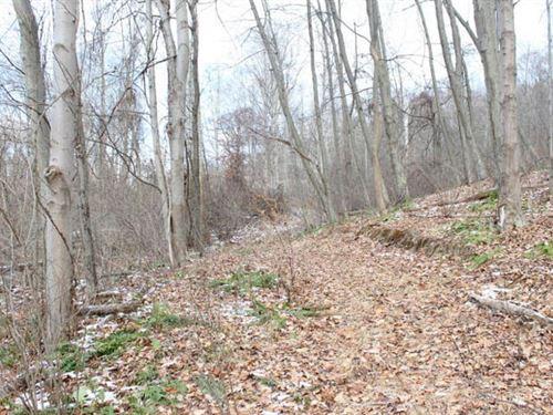 50 Acres Wooded Land : Wapwallopen : Luzerne County : Pennsylvania