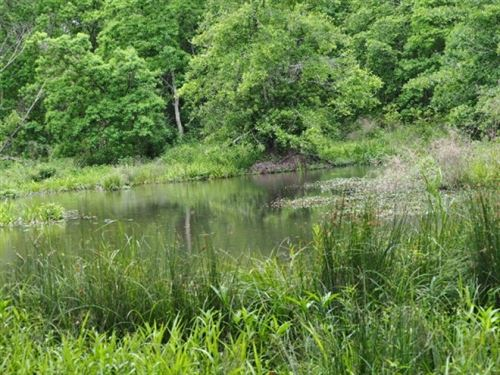 140 Acres Hunting Timberland Recrea : Magnolia : Pike County : Mississippi