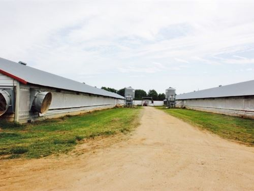 Poultry Farm 4 Houses Breeder 44 Ac : Mount Olive : Covington County : Mississippi