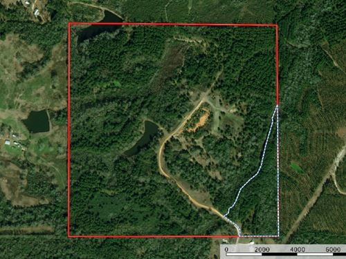 150 Acres Residential Development : Poplarville : Pearl River County : Mississippi