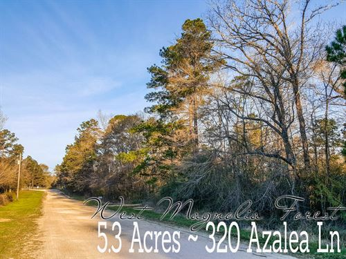 5.29 Acres In Grimes County : Plantersville : Grimes County : Texas