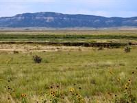 40 Acres For Sale In Trinidad, CO : Trinidad : Las Animas County : Colorado