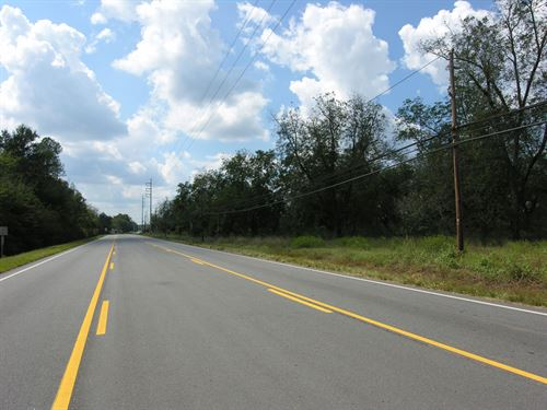 56 Acres Development Property : Waynesboro : Burke County : Georgia