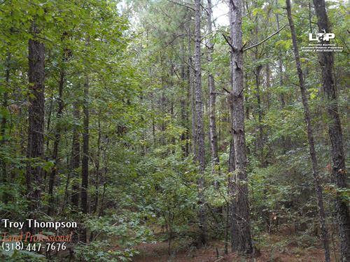 35 Acres Caldwell Parish : Columbia : Caldwell Parish : Louisiana
