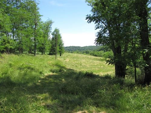 Wooded Parcel With Creek : Platteville : Grant County : Wisconsin