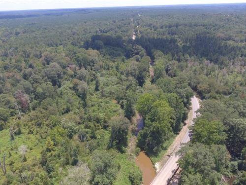 126 Acres In Neshoba County : Philadelphia : Neshoba County : Mississippi