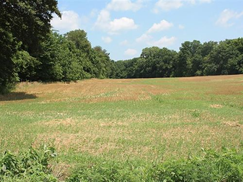 Land Auction In Posey Co., In : New Harmony : Posey County : Indiana
