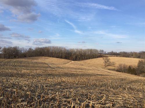 76.4 Acres On Little Platte River : Platteville : Grant County : Wisconsin