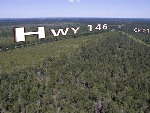 52.6 Acres Menard Creek : Rye : Liberty County : Texas