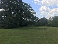 15.14 +/- Acre Property, Bartow Co. : Cartersville : Bartow County : Georgia