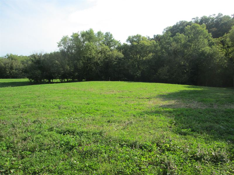 8 Acre River Frontage In Green Co : Greensburg : Green County : Kentucky
