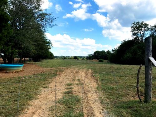 421 Acres Of Pasture Land : Starkville : Oktibbeha County : Mississippi