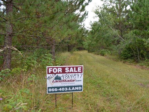 Hubbard, Cw Lake, 1393313, Nwse : Nevis : Hubbard County : Minnesota