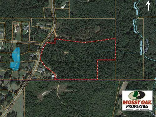 27 Acre Estate Home Site And : Carthage : Leake County : Mississippi
