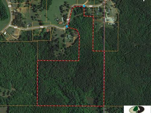 54 Acre Union County, MS Hunti : Dumas : Union County : Mississippi