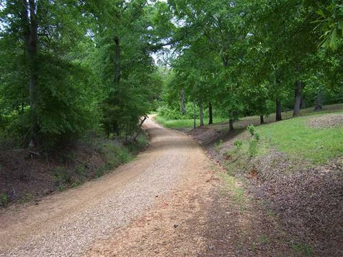 40 Acres, Leake County, Near : Carthage : Leake County : Mississippi