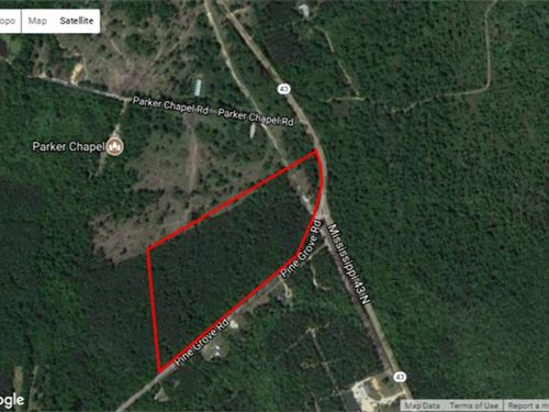 50 Acres Hunting, Residential : Picayune : Pearl River County : Mississippi