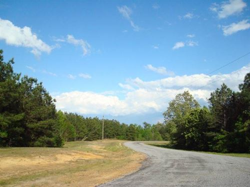 48.14 Acre, Tract 116, Mini-Fa : Brandon : Rankin County : Mississippi