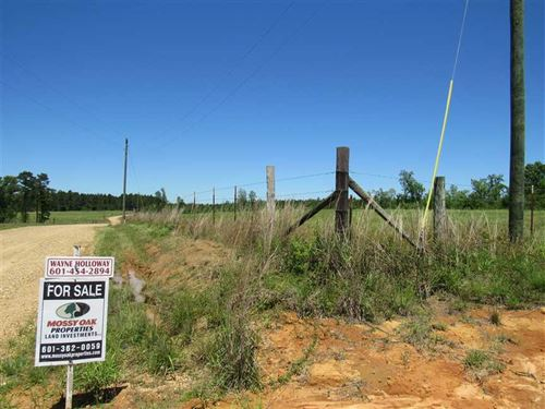 40 Acres Hunting/Residential : Beaumont : Perry County : Mississippi