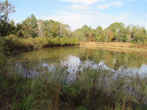 100 Acres W/Hunting Camp Invest : Heidelberg : Jasper County : Mississippi