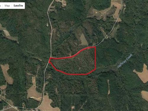 72 Acre Monroe County Hunting : Amory : Monroe County : Mississippi