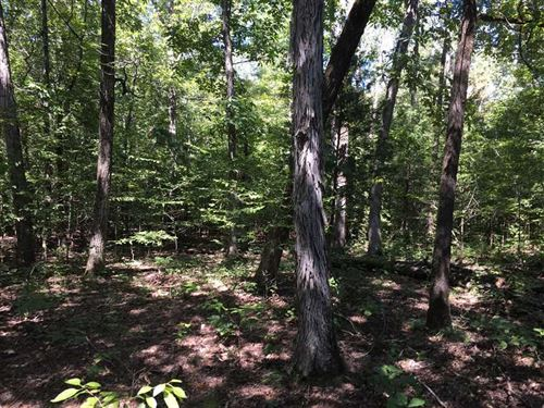 Outstanding 60 Acre Recreationa : Sturgis : Oktibbeha County : Mississippi