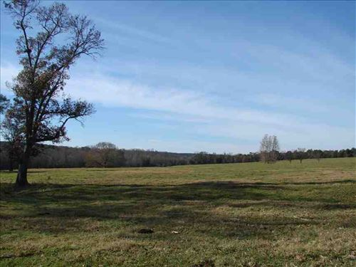 Land For Sale 281 Acres of : Keysville : Burke County : Georgia