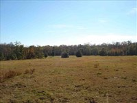 Land For Sale 75 Acres of Ran : Keysville : Burke County : Georgia