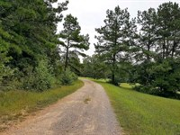 Reduced $100,000. Motivated Sell : Adamsville : McNairy County : Tennessee