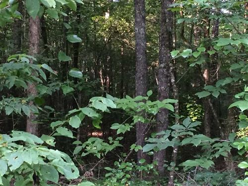 Land 23 Acres For Sale in Holmes : Durant : Holmes County : Mississippi