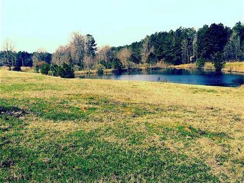 Curtis Lane Tract, Bossier Parish : Plain Dealing : Bossier Parish : Louisiana