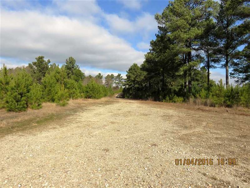 Middle Fork Tract of Saline County : Hot Springs Village : Saline County : Arkansas