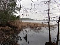 Allison Tract, Bienville Parish, 1 : Jamestown : Bienville Parish : Louisiana