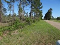 Hope Tract, Webster Parish, 40 Acr : Heflin : Webster Parish : Louisiana