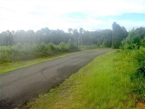 The Salt Mine Tract, Bienville Par : Castor : Bienville Parish : Louisiana