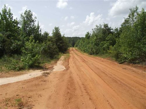 59 Acres Hunting Land in Perry : Marion : Perry County : Alabama