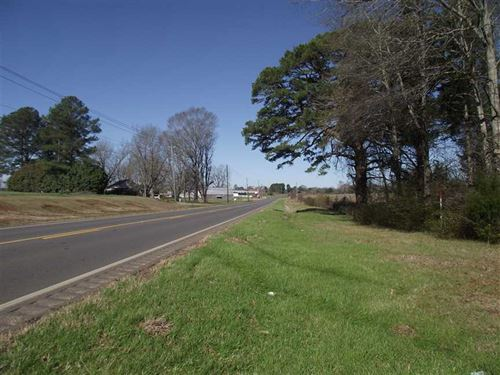 19 Acres With Road Frontage on : Greensboro : Hale County : Alabama