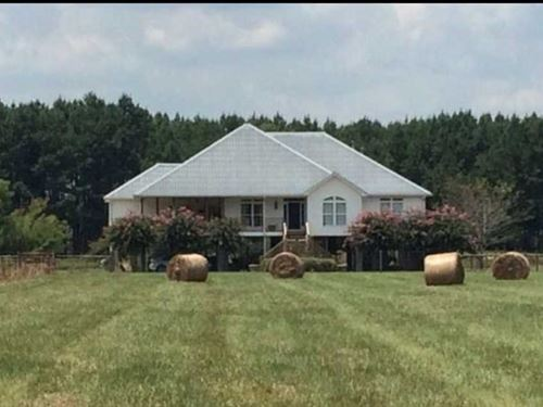 Forever Home, Beautiful 3200 Sq.F : Moundville : Tuscaloosa County : Alabama