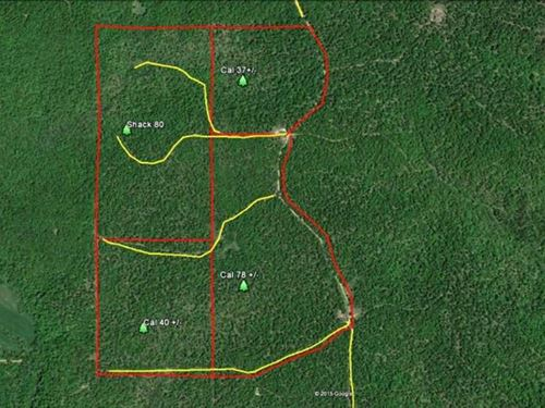 78 Acres For Sale in Ripley County : Doniphan : Ripley County : Missouri