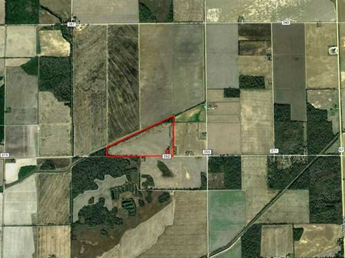 55 Acres of Agricultural Land For : Neelyville : Butler County : Missouri