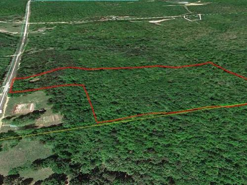 16 Acres For Sale in Ripley County : Doniphan : Ripley County : Missouri