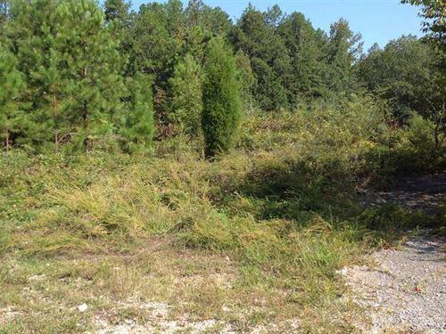 8 Acres Wooded Property on Ewin : Leesburg : Cherokee County : Alabama