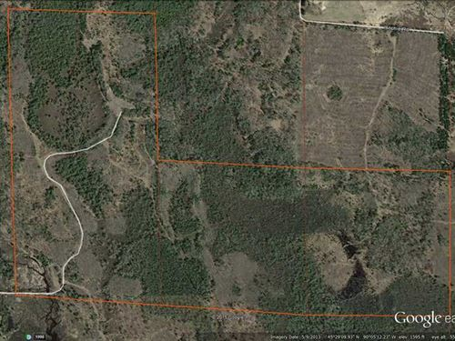 160 Acres of Hunting Land in Price : Brantwood : Price County : Wisconsin