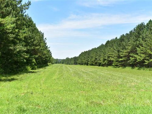 Prime Recreational Tract For Sale : Somerville : Fayette County : Tennessee