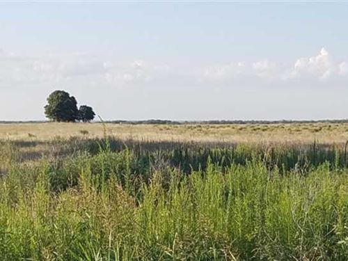 Cypert Farm Approx 75 Acres Knox : Knox City : Knox County : Texas