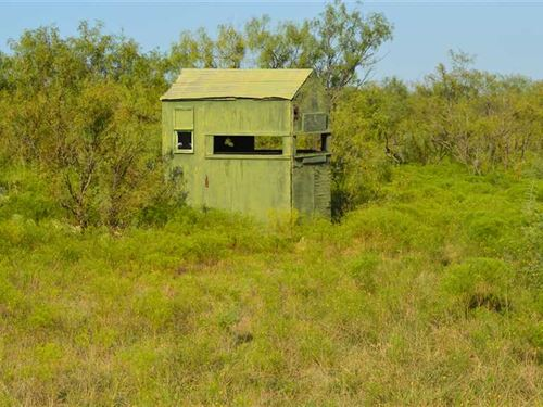Great 126 Acres Property For Hunti : Loving : Young County : Texas