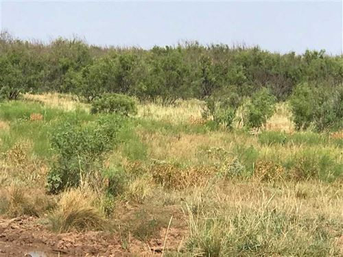 300 Acres Exceptional Ranch And : Holliday : Archer County : Texas